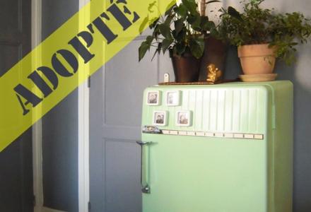 ancien-frigo-frigidaire-rénové-meuble-vert-pastel-recyclage-réutilisation-2