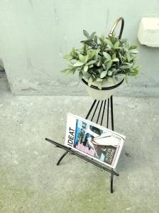 porte-revue-vintage-fifties-années-50-métal-noir-laiton-porte-plantes-pots